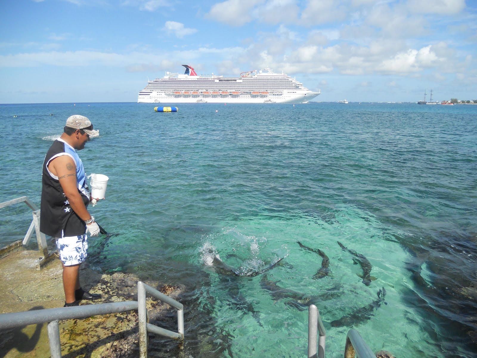 Kvi Interline Travel Adventures Carnival Magic 7 Day