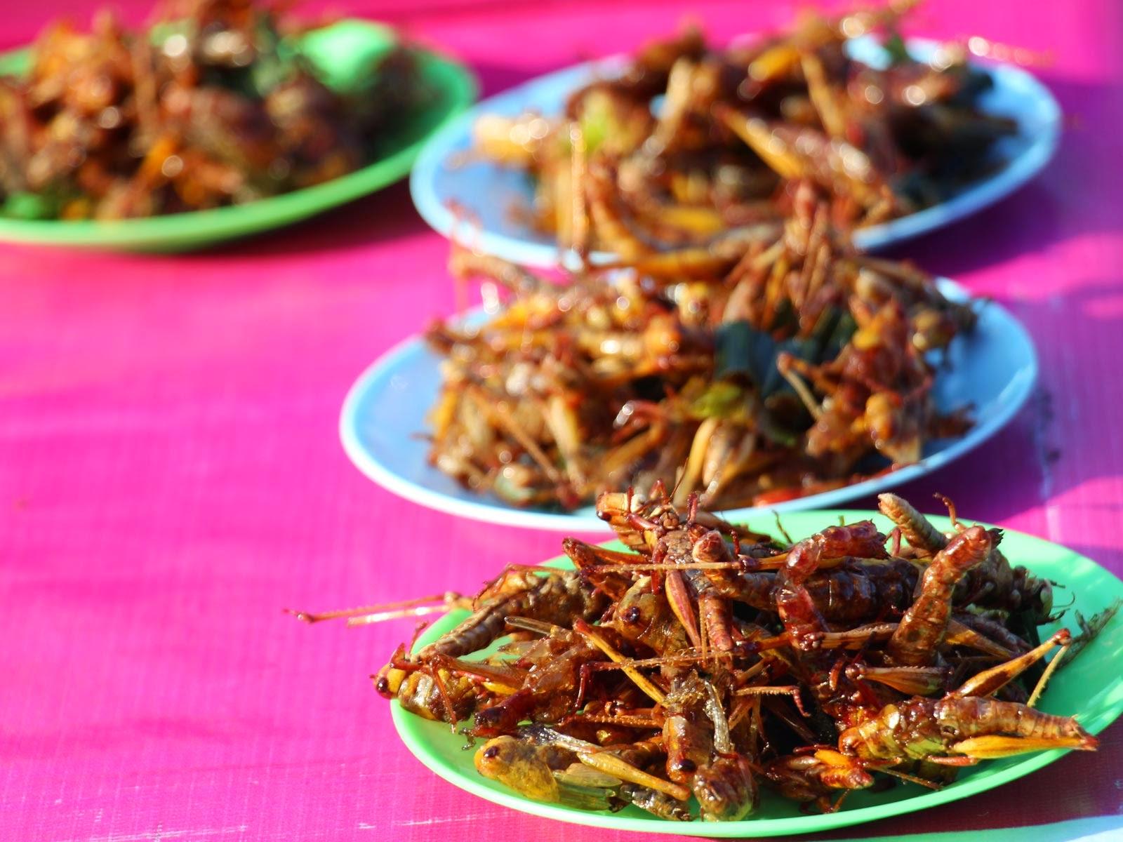 sauterelles thaïlande