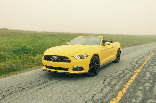2015 Ford Mustang EcoBoost convertible yellow 50th anniversary package