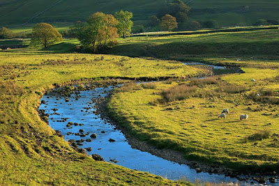 Lovely-Littondale-Extraction