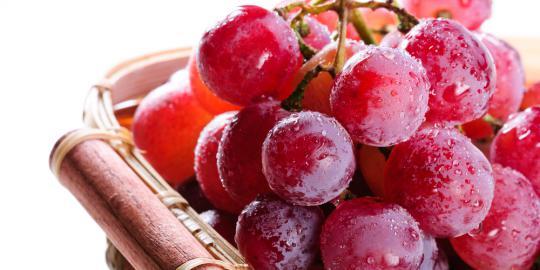 10 Makanan terbaik untuk mencegah penyakit tua
