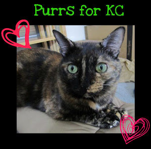 Purring for KC