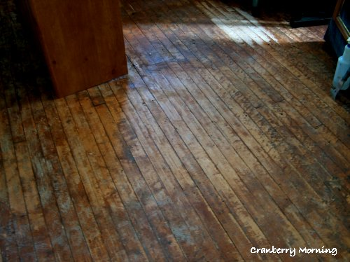 Cranberry morning refinishing hardwood floors for Wood linoleum