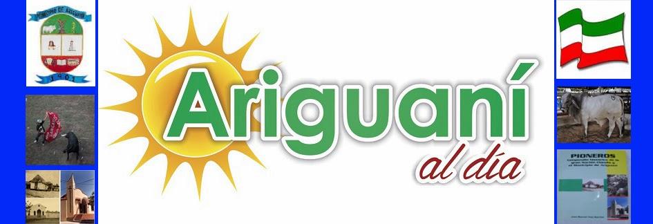 Ariguaní al Día