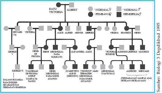 Peta silsilah pewarisan penyakit hemofili keturunan Ratu Victoria