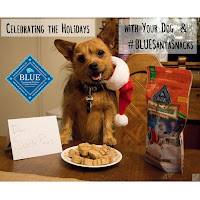 Celebrating the Holidays with your dog & Blue Buffalo Santa Snacks