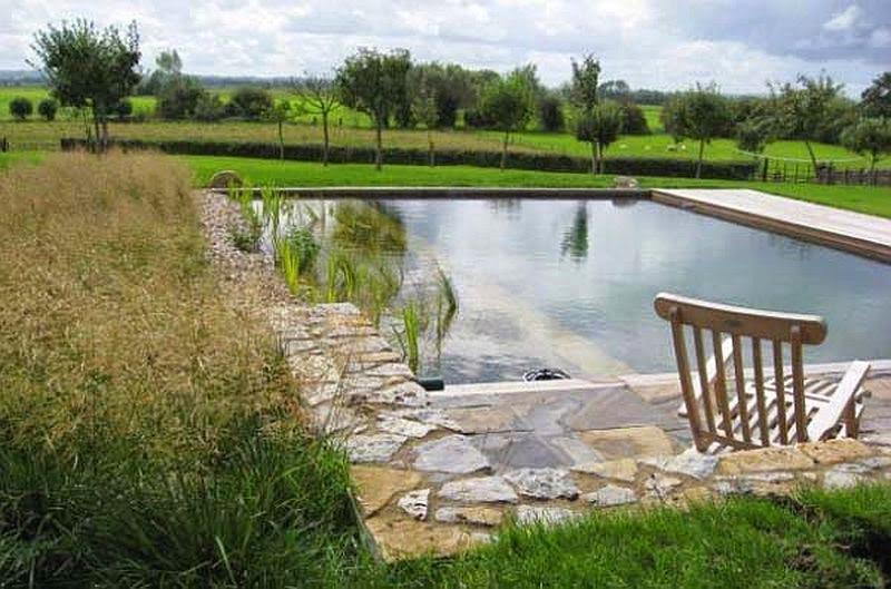 Beautiful Natural Swimming Pool Designs Gallery Decorating