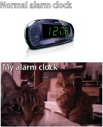 Normal Alarm Clock vs My Alarm Clock