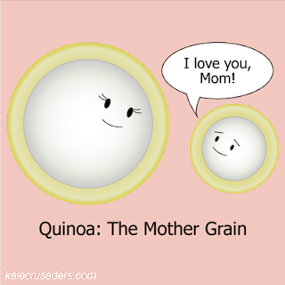 Quinoa: The Mother Grain