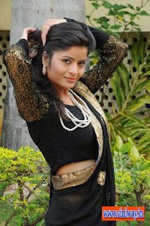 Gehana-Vasista-Stills-in-Saree