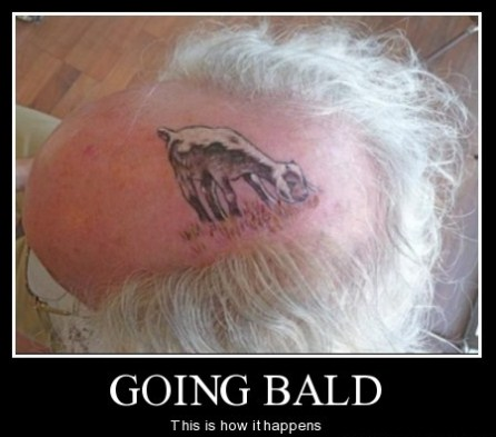 I Pay My Oncologist Big Bucks For This Hairstyle Pilgrims Pathway - Bald hairstyle quotes