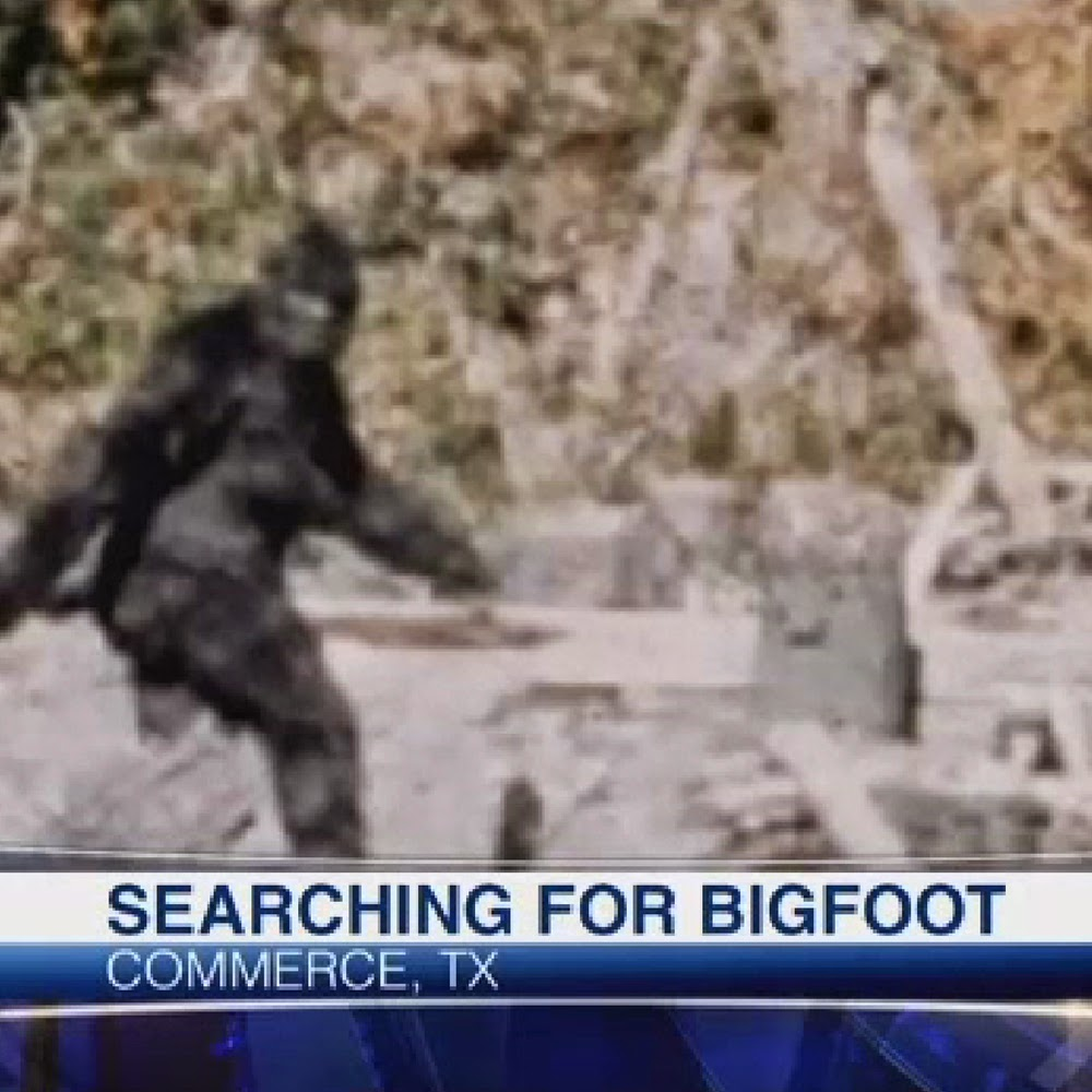searching for sasquatch by - photo #12