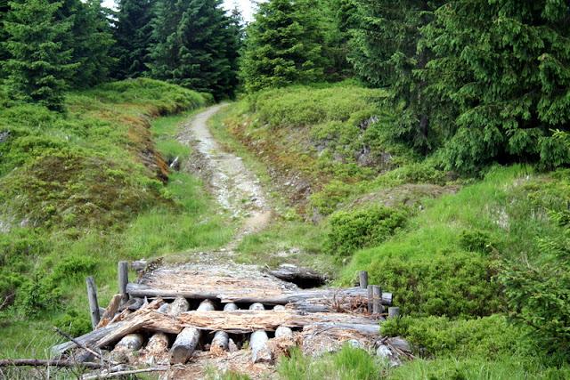Aufstieg zum Hinterberg im schlesischen Teil des Isergebirges