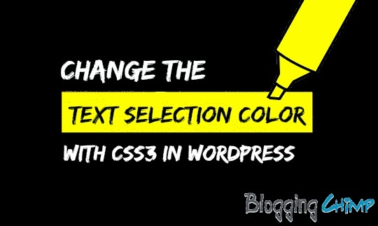 Change the text selection color with CSS3 In WordPress