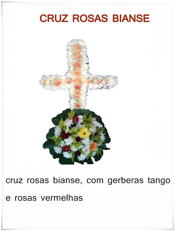 CRUZ ROSAS BIANSE