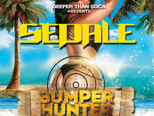 St.Lucia Carnival 2014: Sedale - Bumper Hunter