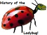 <b>History of the Ladybug</b>
