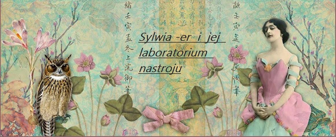 Sylwia-eR i jej laboratorium nastroju