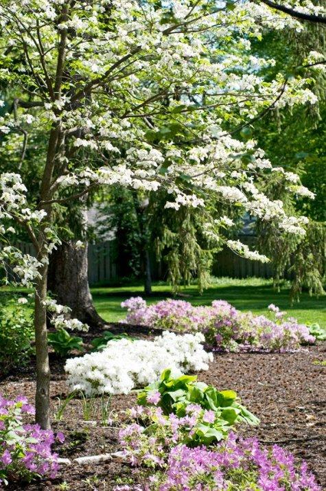 Jardin del aire cuidar de tus plantas es for Jardin de plantas