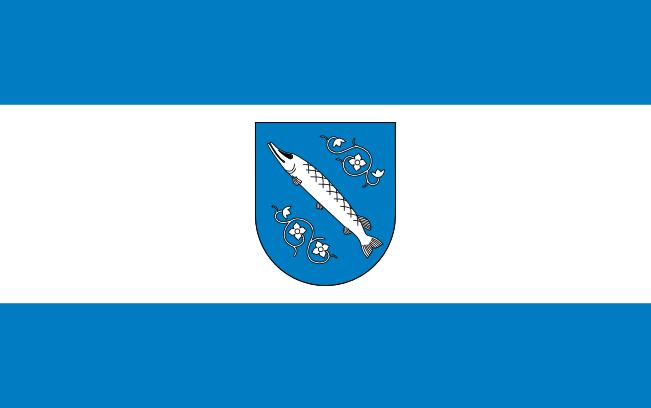 Flaga Rybnika