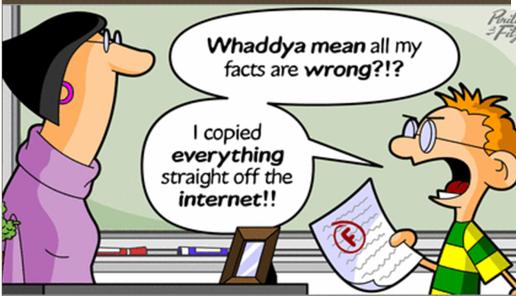 evaluating web sites essay
