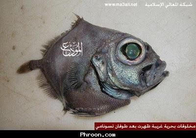 صور مخلوقات غريبه ظهرت بعد طوفان تسونامي !!!