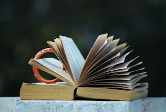 Blog de lecture