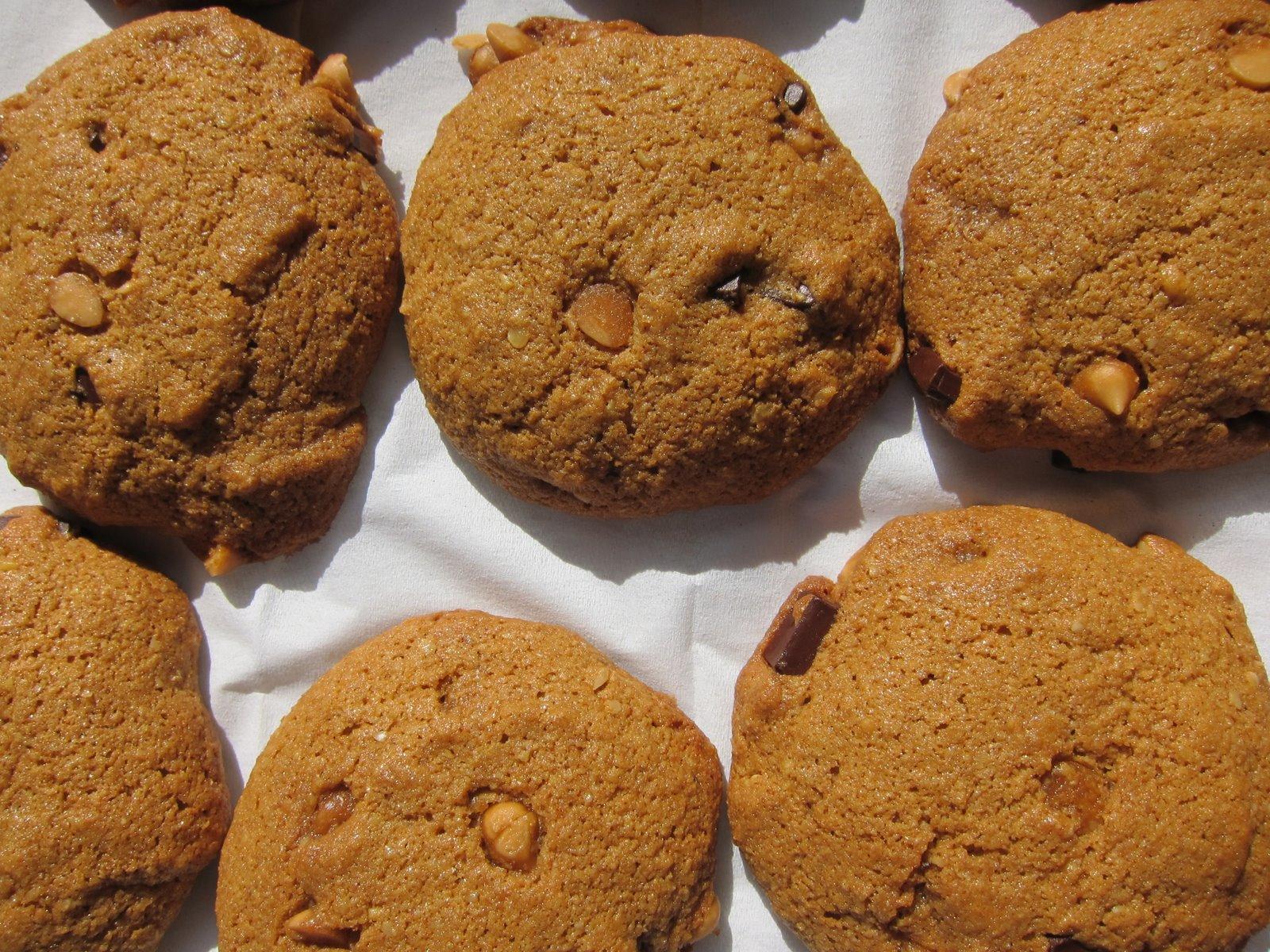 Molasses Chocolate Chunk Cookies Recipe — Dishmaps