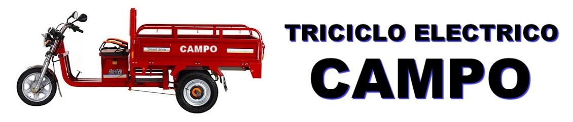 699.990 TRICICLOS ELECTRICOS MOTO CON CARRO CHINOS SAN DIEGO