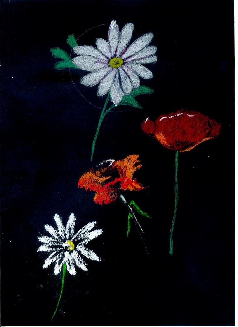 Excelente Páginas Para Colorear De Flores Blancas Y Negras Regalo ...