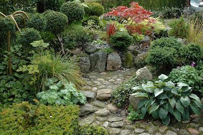HAVETID: Sten og planter.