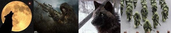 Κυοφορώντας έναν...δύο...πολλούς «Μοναχικούς Λύκους»...