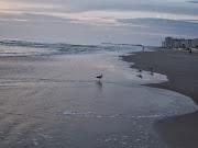 Loving our beaches.....