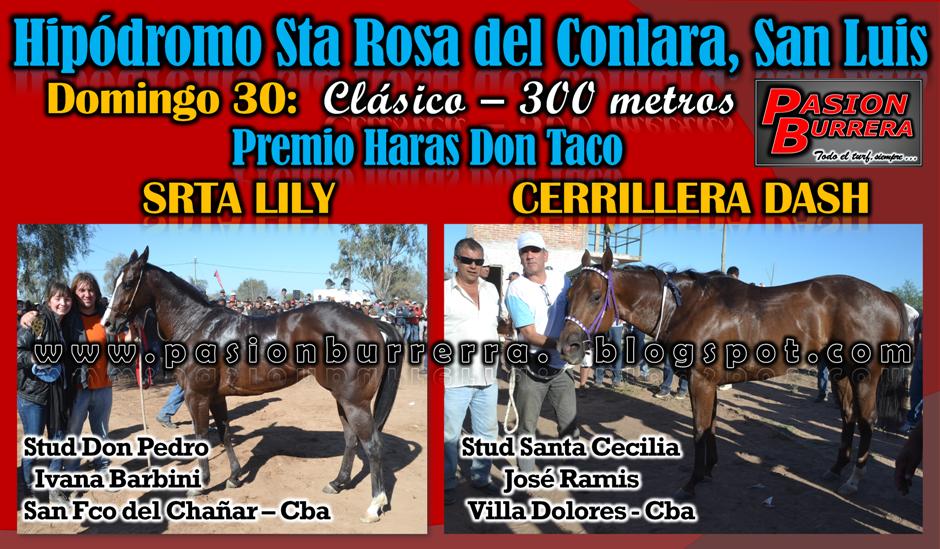 CONLARA - 30 - CLASICO