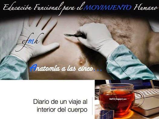 Anatomía a las cinco: Observar con las manos | Educación Funcional ...