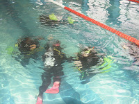 Aquarius dive center Constanta Romania PADI open water diver Referral course