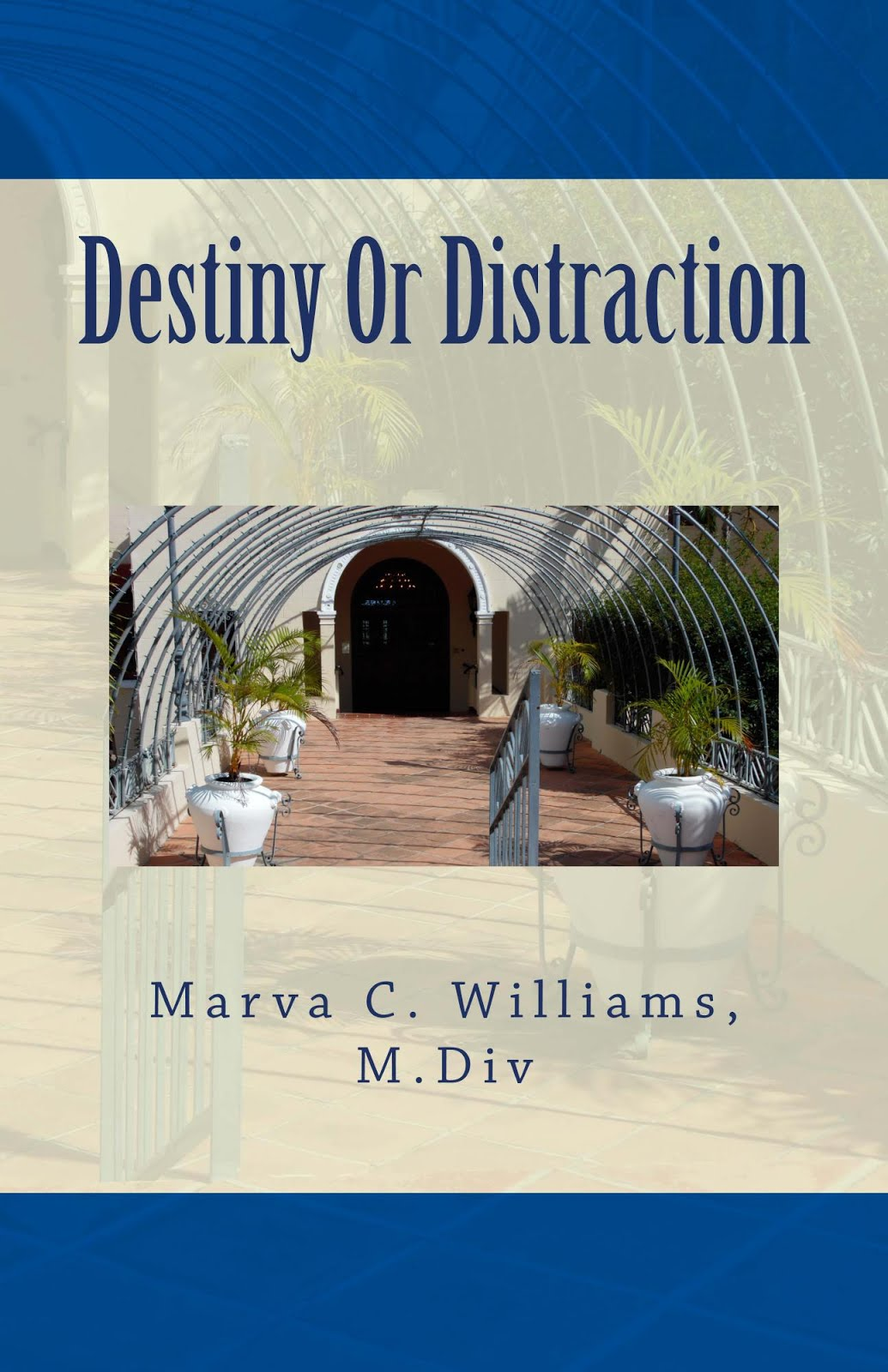 Destiny or Distraction