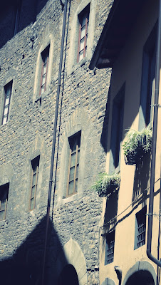 Windows in Tuscany and flower pot