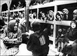 prostitutas campos concentración prostitutas en cracovia
