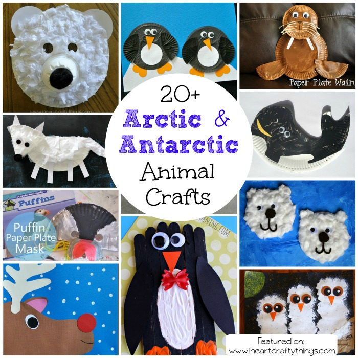 antarctic animals for kids - photo #3