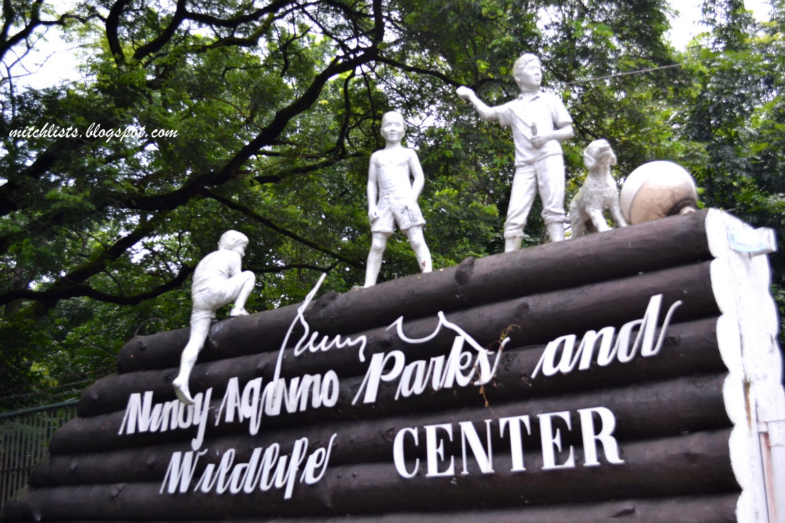 ninoy aquino parks and wildlife center Ninoy aquino park & wildlife center is a 6458-hectare zoological and botanical garden located in diliman, quezon city, philippines this park has a lagoon, an .