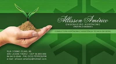 engenheiro agrônomo = allisson américo