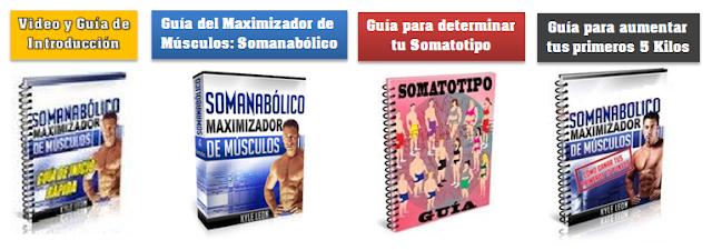 4 pdf somanabólico maximizador de músculos