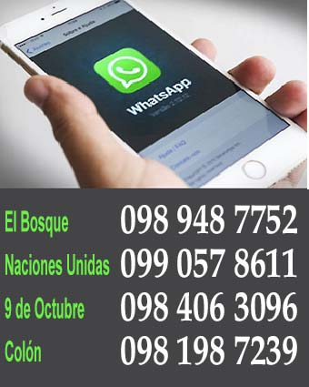 Ahora en Whatsapp