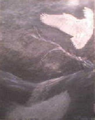 Arctic Night Owl (2008) Price: $275