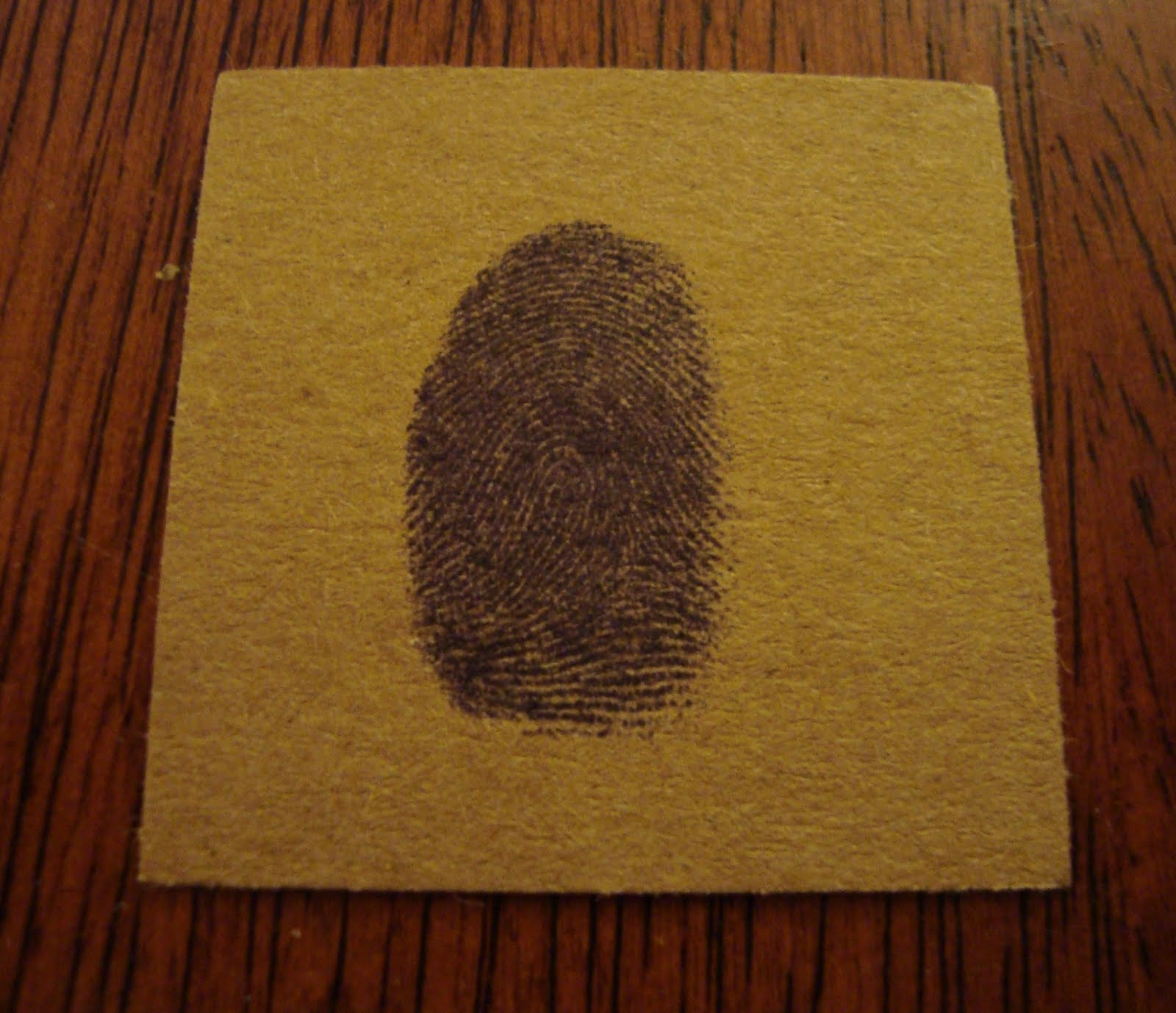 Family Fingerprint Specimen Art - Shaken Together