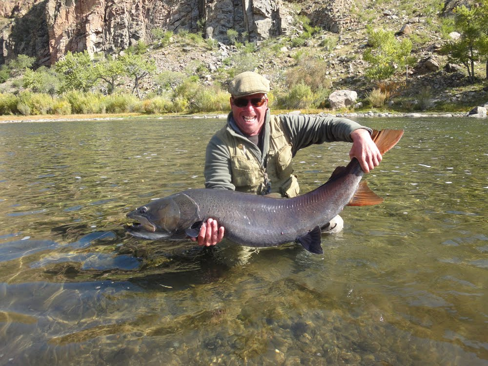 Wyoming fly fisher big fish for Miracle mile fishing