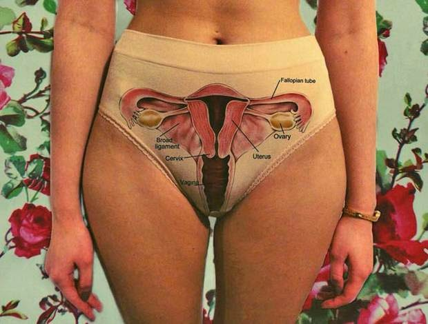 Artistic underwear gives a biology lesson in women's internal anatomy
