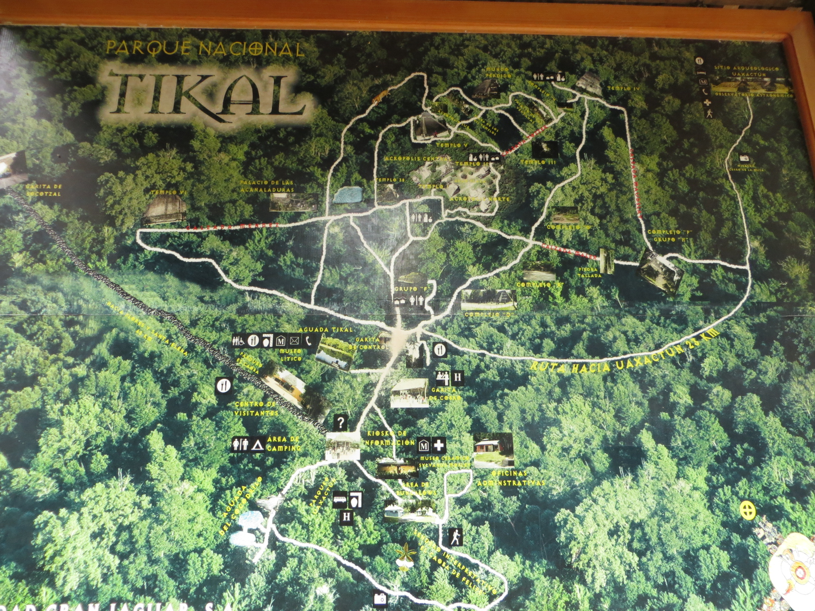 map of the site there are thousands of structures in tikal but most of them are still buried under vegetation