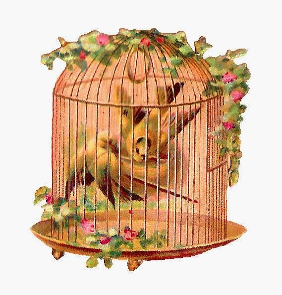 http://1.bp.blogspot.com/-V4Isz0d77Lw/VSB1UvCasII/AAAAAAAAWHU/ojGMq6Ywd0w/s1600/flwr_bird_cage_scrap.jpg